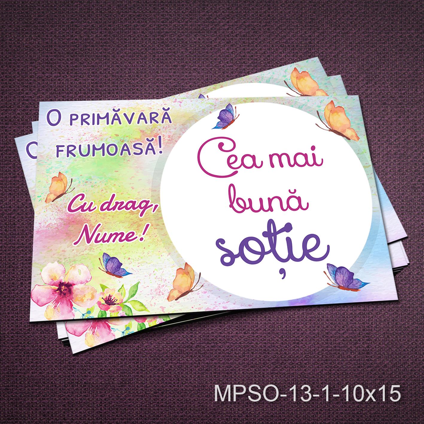 Felicitare magnetica - cea mai buna sotie - MPSO-13-1-10x15