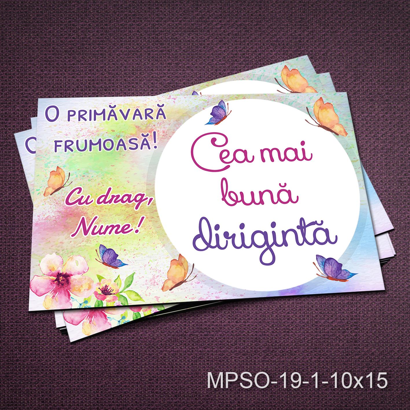 Felicitare magnetica - cea mai buna diriginta - MPSO-19-1-10x15