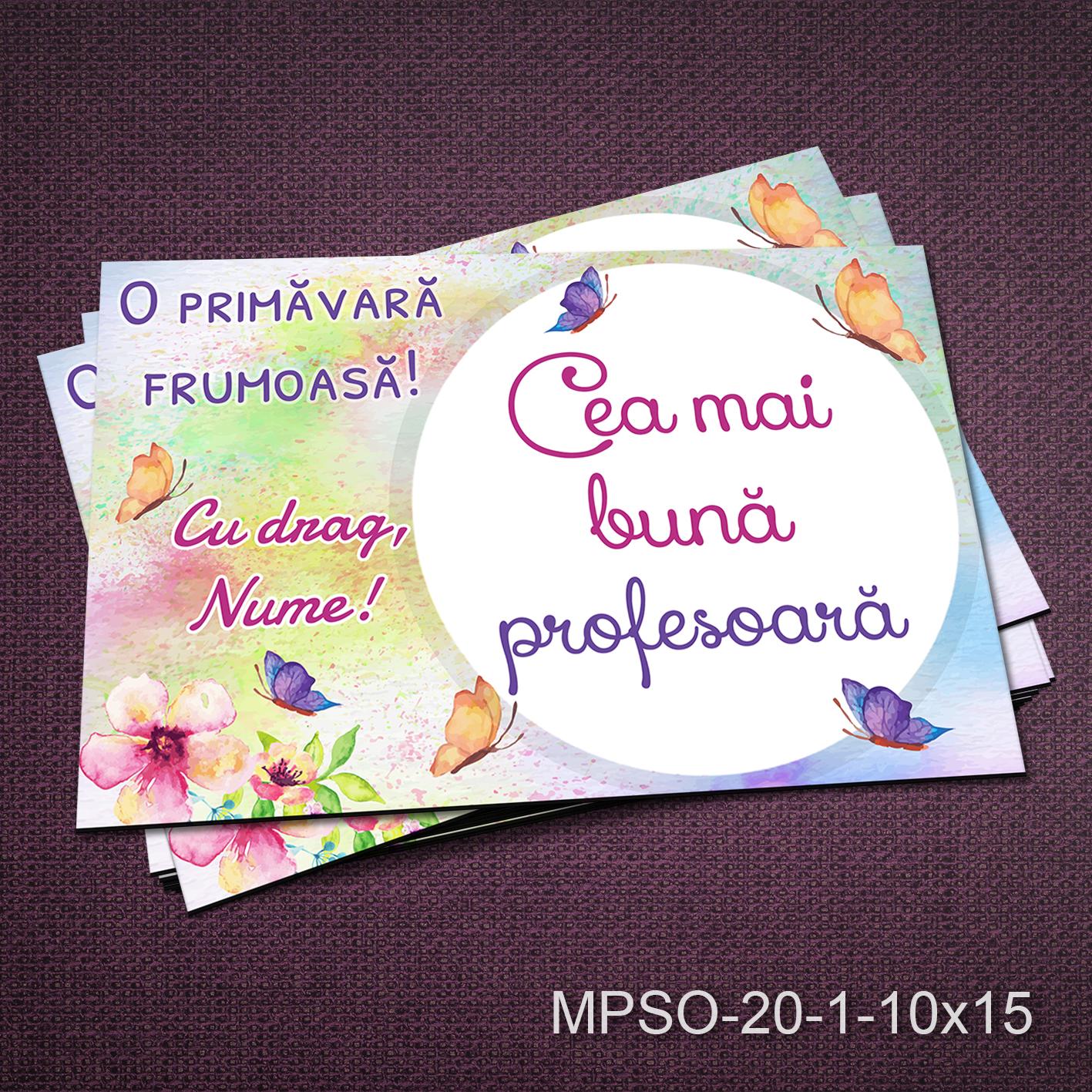 Felicitare magnetica - cea mai buna profesoara - MPSO-20-1-10x15