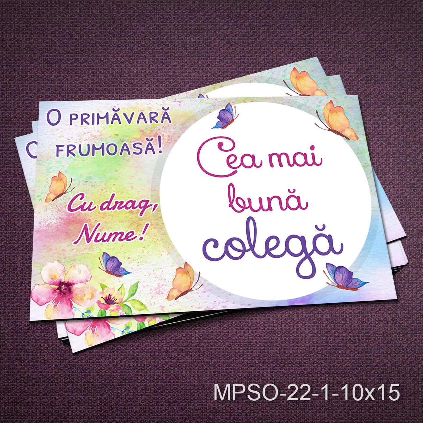 Felicitare magnetica - cea mai buna colega - MPSO-22-1-10x15